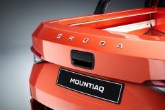 Mountiaq_Skoda_lettering-1920x1280